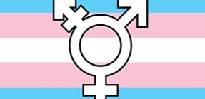 What's Different about Transgender Sex Toys? And Why We Need More